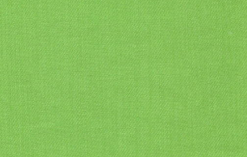 Apple Green Adobe Twill